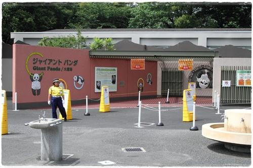 上野動物園 (36)