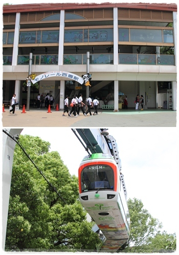 上野動物園 (40)