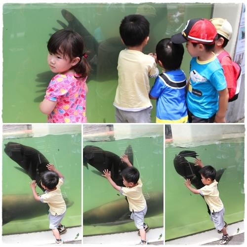 上野動物園 (43)