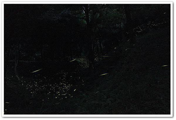 IMG_6938-1