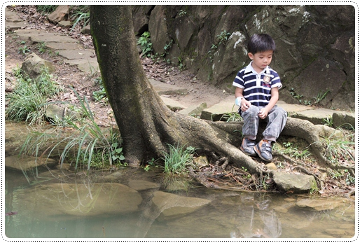 新山夢湖 (11)