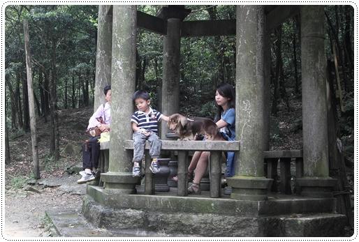新山夢湖 (20)