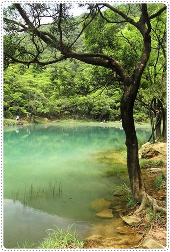 新山夢湖 (23)
