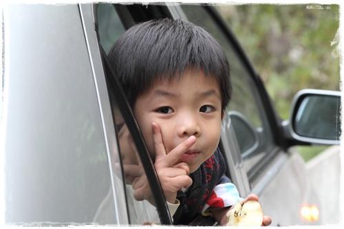 合歡山賞杜鵑 (39)