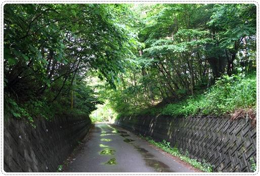 清里萌木之村 (1)