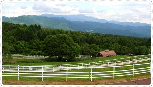 牧場公園 (4)