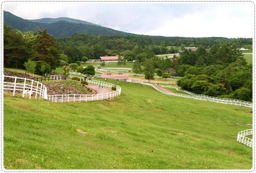 牧場公園 (8)