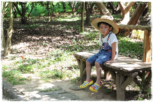 龍鑾潭自然中心 (3)