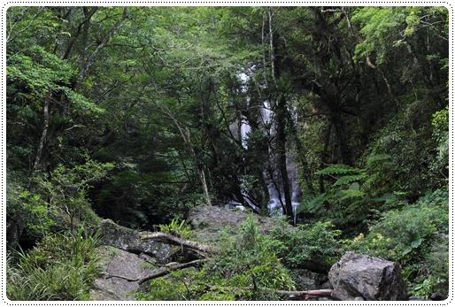 雲森瀑布 (12)
