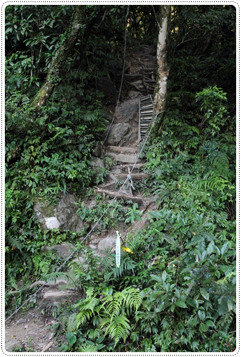 雲森瀑布 (13)