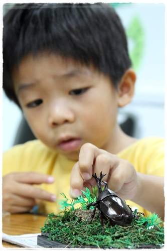 昆蟲夏令營 (18)