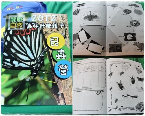 昆蟲夏令營 (32)