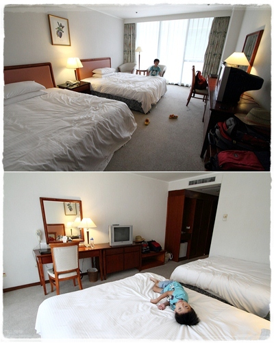 山芙蓉飯店 (17)