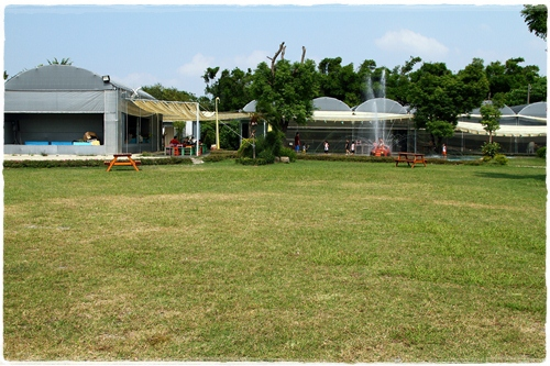 沐卉農場 (15)