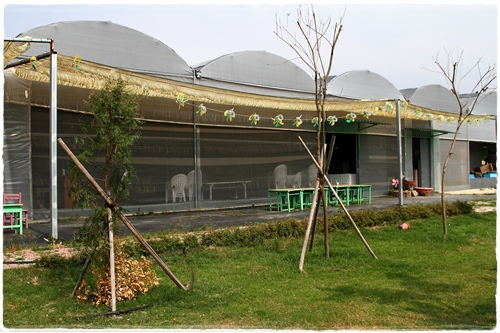 沐卉農場 (21)