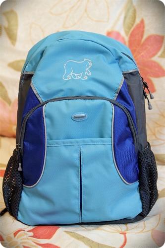 休閒背包 (8)