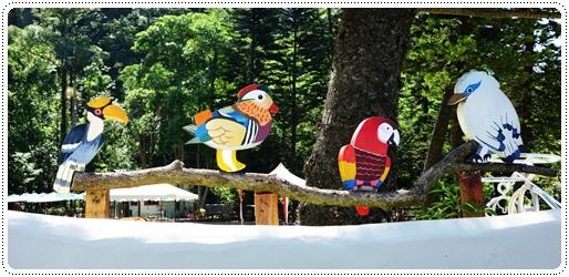 森林鳥花園 (3).JPG