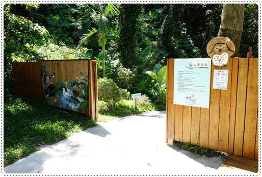 森林鳥花園 (13).JPG