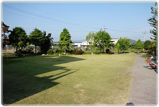 沙發後花園 (9).JPG