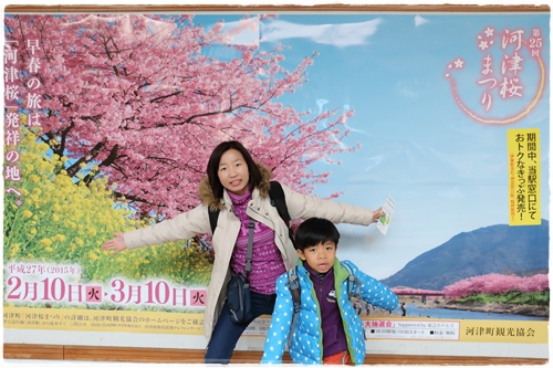 0218河津櫻花祭 (1).JPG