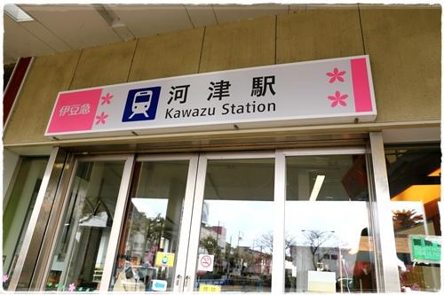 0218河津櫻花祭 (2).JPG