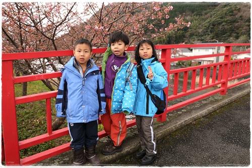 0218河津櫻花祭 (5).JPG