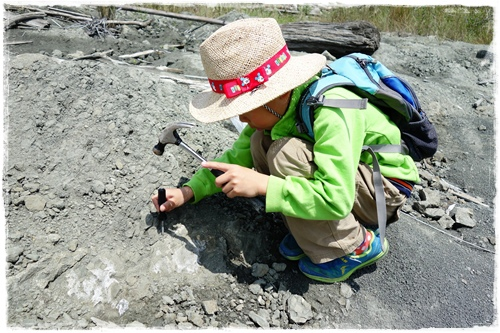 化石營 (14).JPG