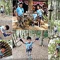 tree top adventure park.jpg