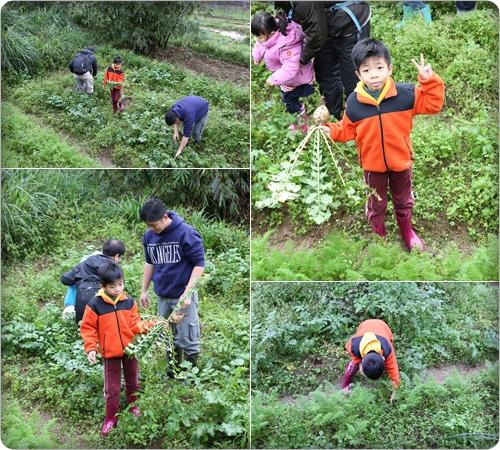 Bubutrip小農夫體驗營 (2).jpg