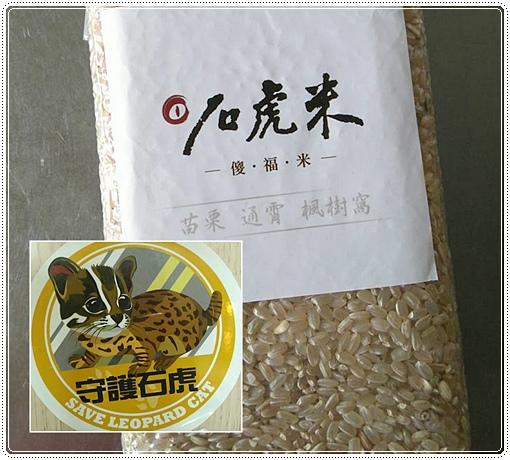 石虎米插秧 (4).jpg