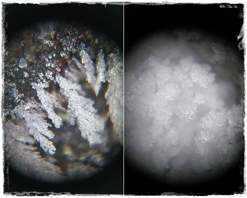 uhandy行動顯微鏡
