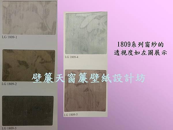 壁簾天窗簾~無接縫窗紗(透視度展示圖)