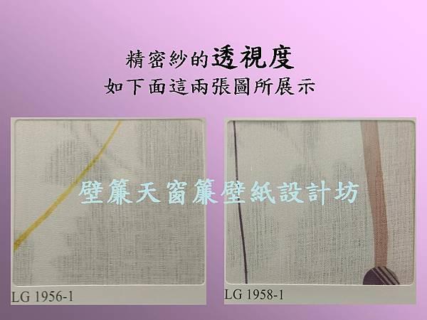 壁簾天窗簾~5尺印花窗紗(透視圖展示)