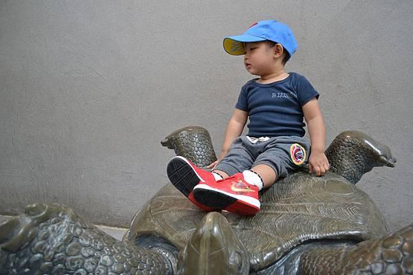 動物園 410