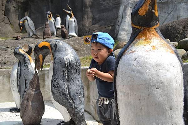 動物園 474