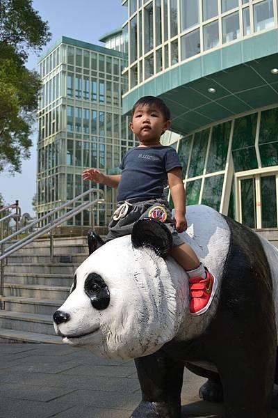 動物園 567