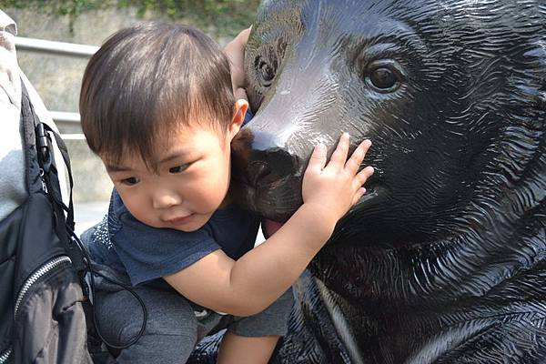 動物園 586