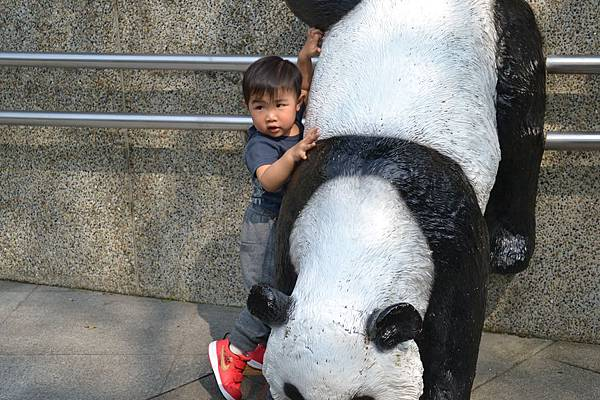 動物園 603