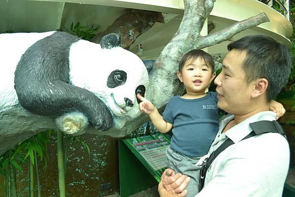 動物園 612