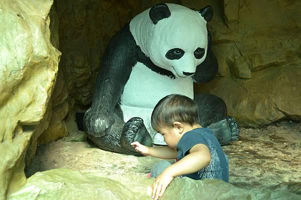 動物園 617