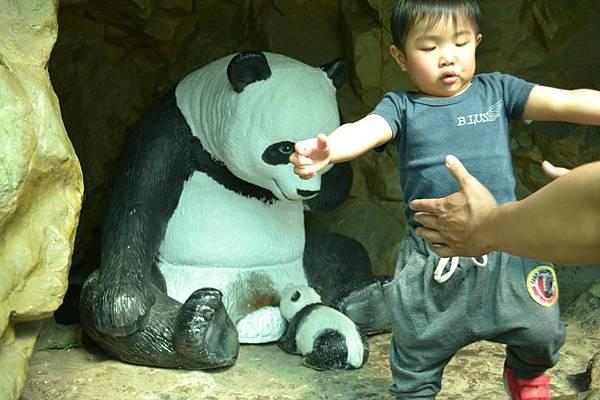 動物園 626