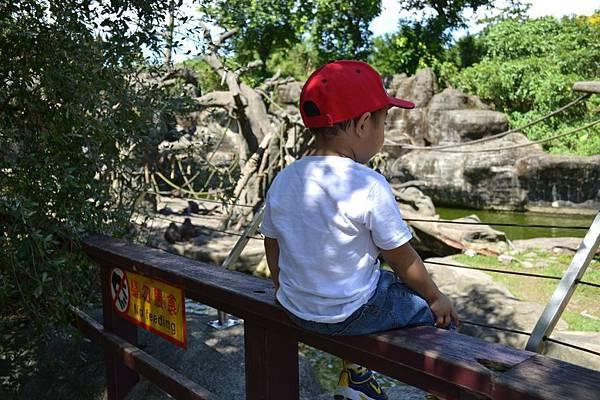 Zoo~ 069.jpg