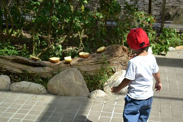 Zoo~ 121.jpg