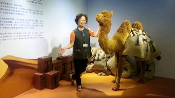 駱駝絲路之旅.jpg