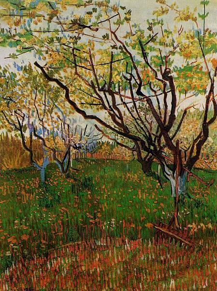 Orchard in Bloom - (Vincent van Gogh - 1888)