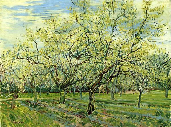 Orchard with Blossoming Plum Trees aka qaz - (Vincent van Gogh - 1888)