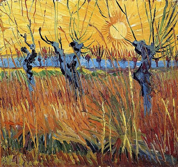 Pollard Willow with Setting Sun - (Vincent van Gogh - 1888)