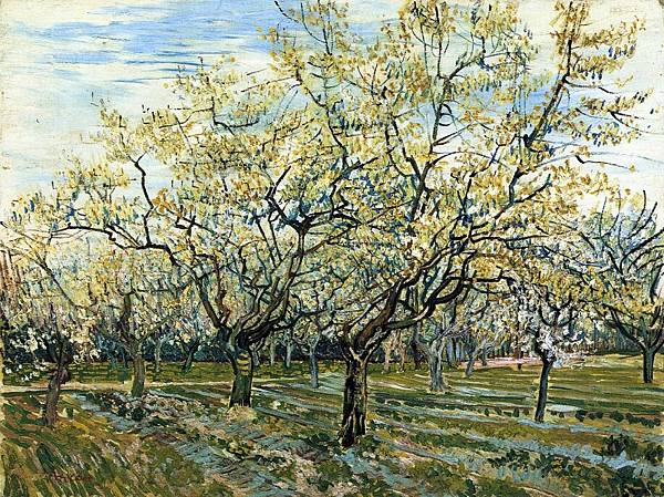 The White Orchard - (Vincent van Gogh - 1888)