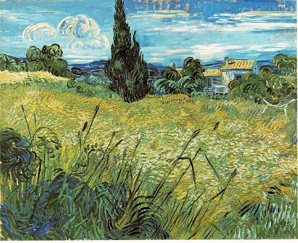 Wheat Field with Cypresses2