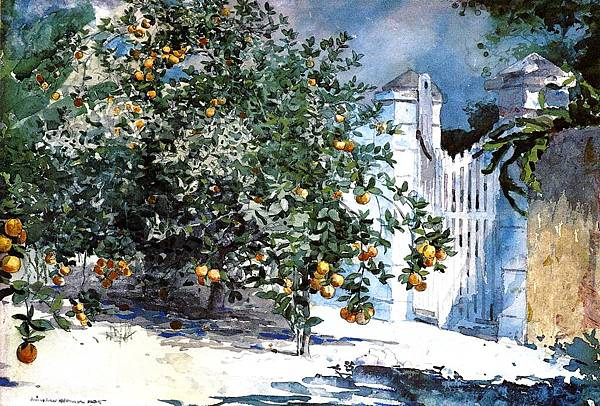 Winslow Homer (1836-1910)-Homer_Winslow_Orange_Tree_Nassau_aka_Orange_Trees_and_Gate-1885